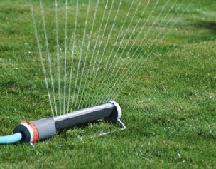 Propper Watering for New Sod, Lawn care